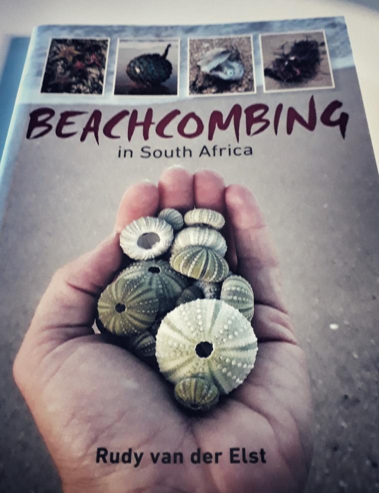 Beachcombing in South Africa